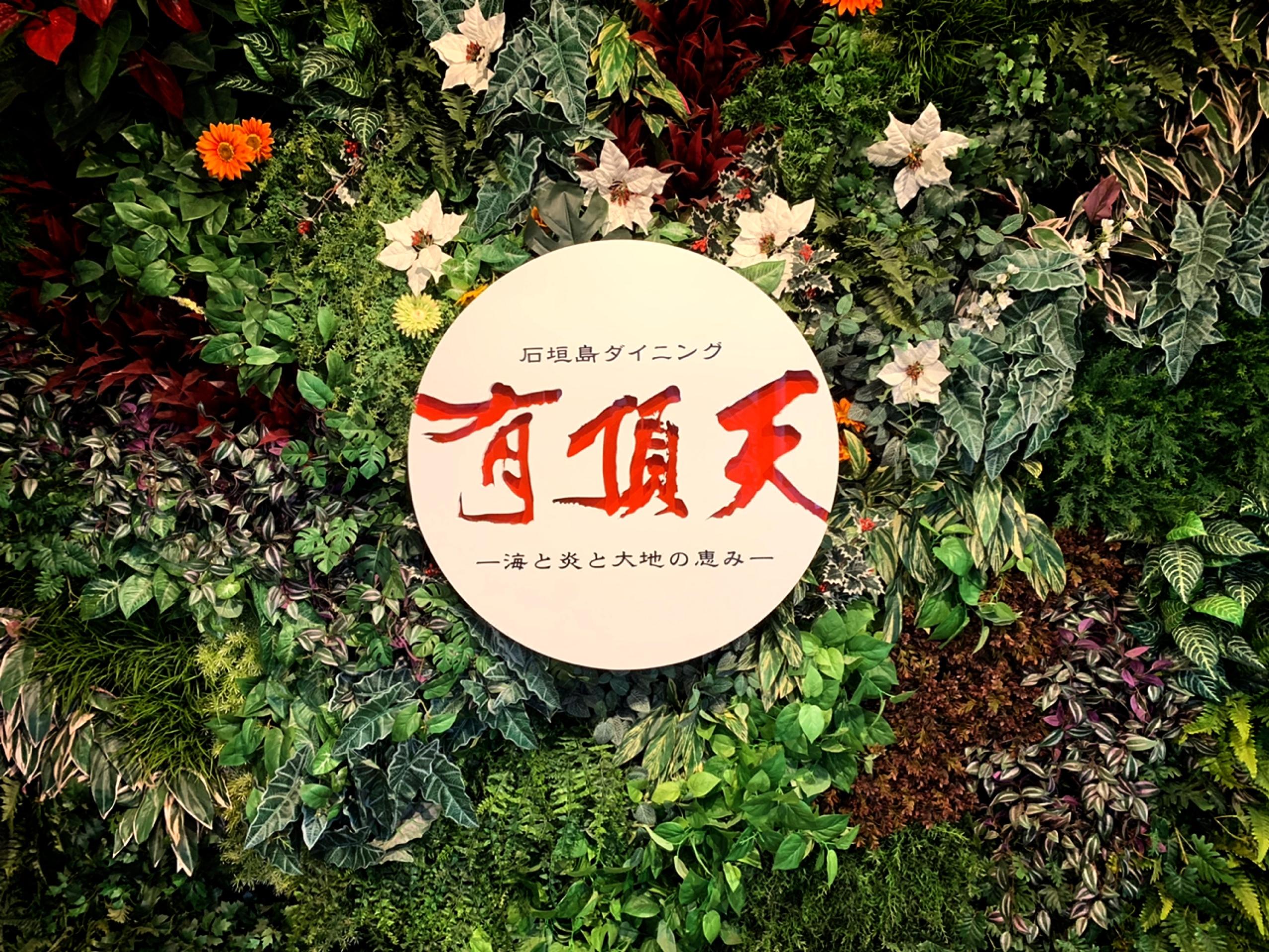 石垣牛や沖縄料理、中華をリーズナブルな価格で楽しめる✨✨
